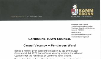 Vacancy Councillor Pendarves